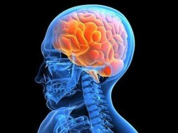 Развитие эпилептоидных очагов