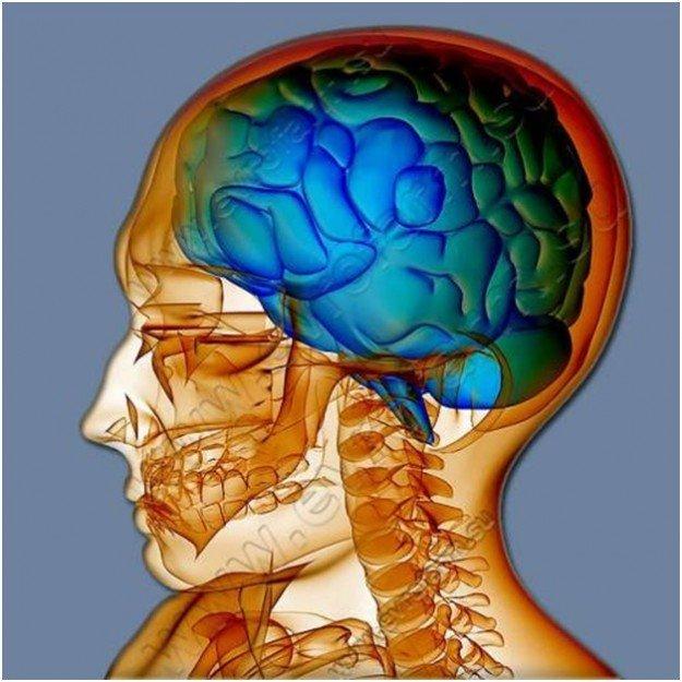 фото-рентген головы человека