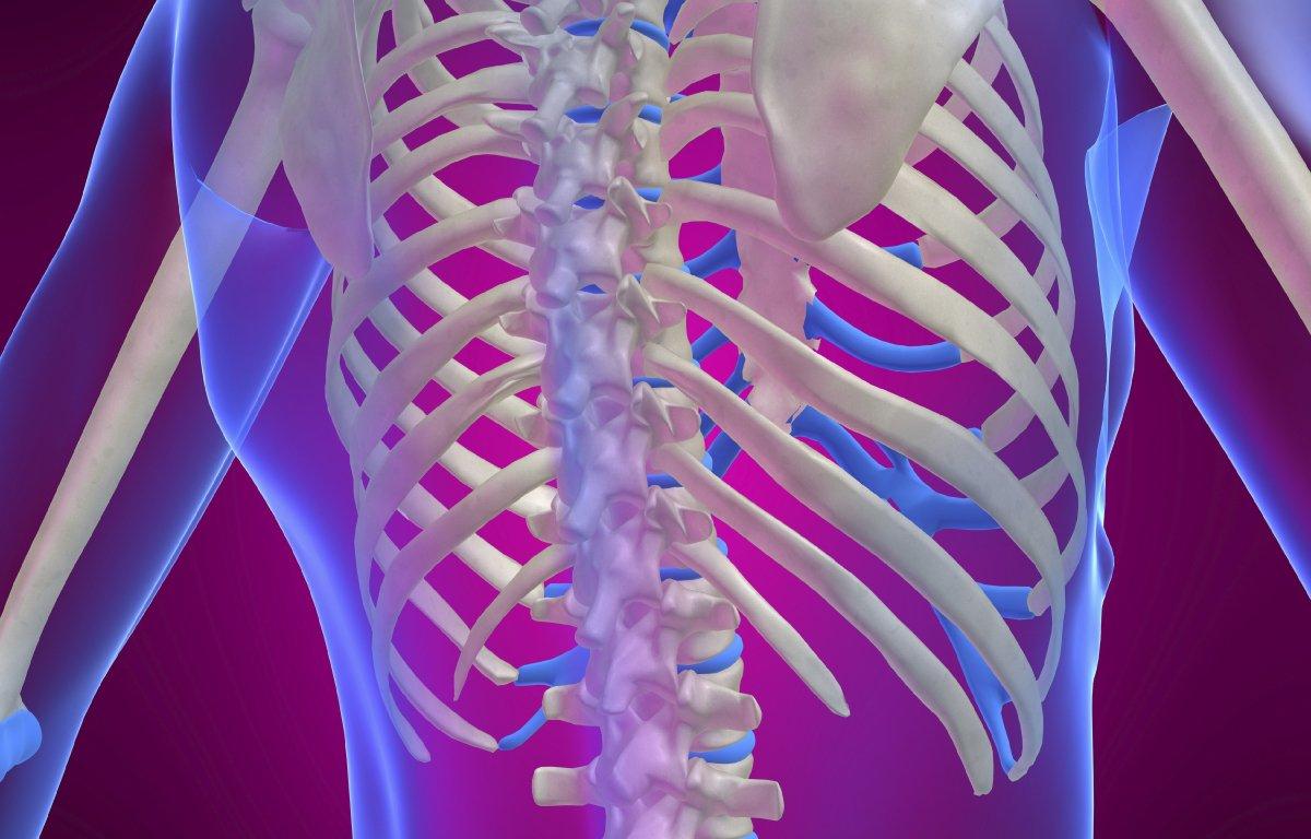 Травма грудной клетки – ушиб и перелом грудной клетки