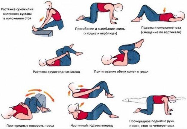 Комплекс упражнений,которые можно выполнять каждый день