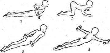 Схема упражнений при кифозе со снарядами