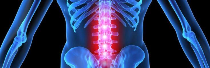 воспаление спинного мозга