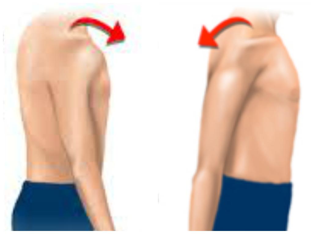 как выпадает плечевой сустав