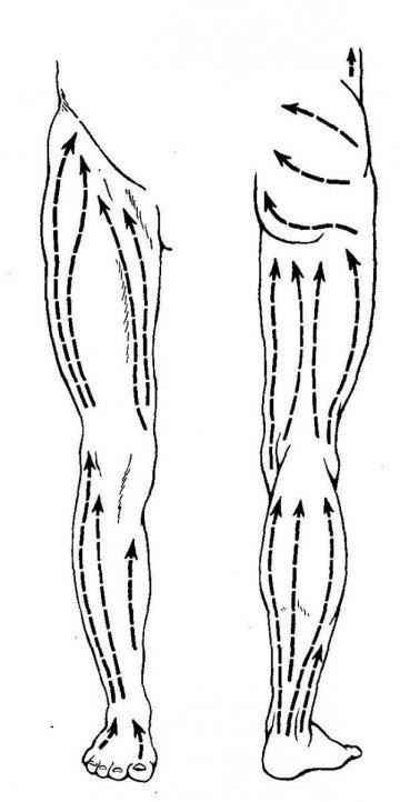 Ноги разделенные на зоны поглаживаний
