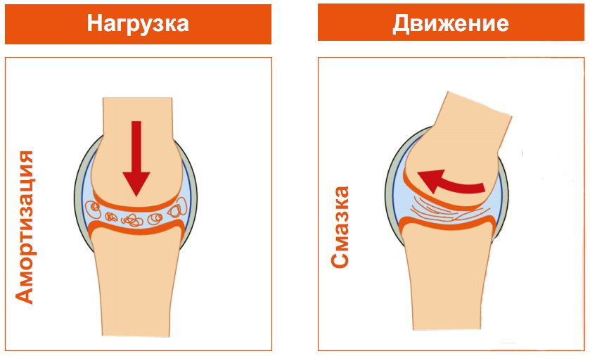 Кислоты для суставов стафилококк и суставы почему не надо лечить