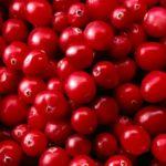 Красная бузина